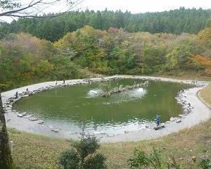 紅葉狩り兼て管理釣り場を見学