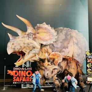 GWのおでかけ◡̈♥︎恐竜大好き◡̈DINO SAFARI