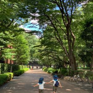 東京都美術館と国際子ども図書館◡̈