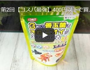 第3回【コスパ最強】400円以下で買える金魚のエサ!紹介
