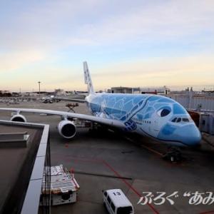 ★全日本空輸(NH / ANA)A380【JA381A】