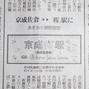 """★今年は""""桜""""^^"""