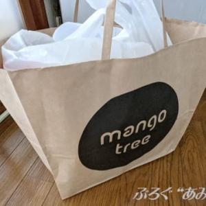 ★【エキナカ便當】マンゴツリーキッチン 東京駅グランスタ de タイごはん