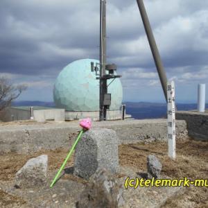 3月 大滝根山@田村市(子どもと一緒に山登り)