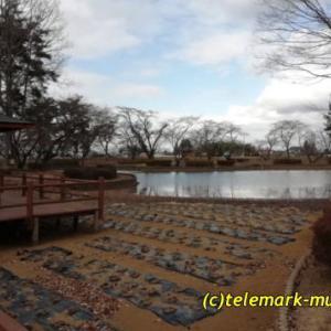 鳥見山公園、鳥見山野球場と鏡石神社