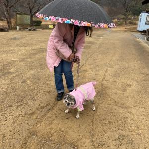 冷たくない雨