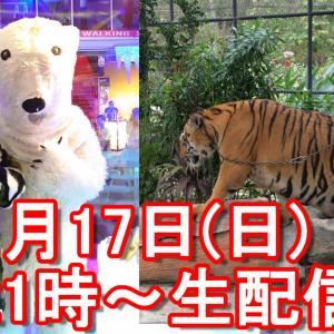【1月17日(日)21時~4か月に渡る東日本周遊完結記念YouTube生配信】