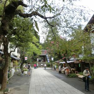 深大寺、府中市郷土の森を散策