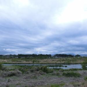 サイクリング 多摩川河川敷