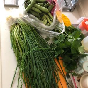 や、野菜!!