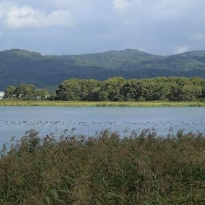 北海道2日目  雨竜沼湿原登山