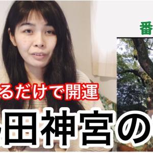 熱田神宮の楠の強烈なパワー