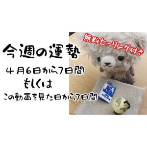 無料ヒーリング付き:今週の運勢(4/6~7日間)