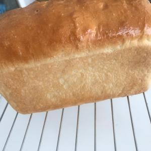 トミーズのアン食パン風に〜