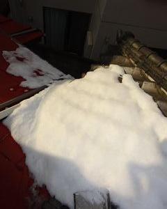 杉並区の成田東で雪下ろし