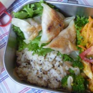 肉味噌三角サモサのお弁当