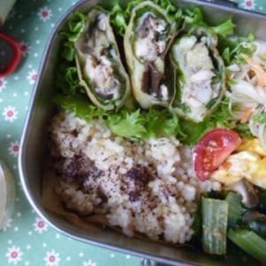 ツナと夏野菜のチーズ春巻きお弁当
