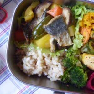 アジと野菜の南蛮漬けお弁当