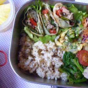 ツナと野菜春巻きのお弁当