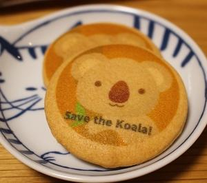 Save the コアラ