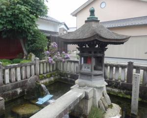 滋賀 湧き水 十王村の水 2020
