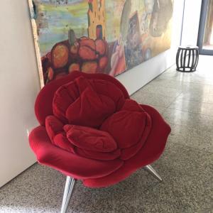 ローズチェア、ルンバ、アスパラ、ブドウの剪定/ Rose Chair, Rumba, Asparagus & Vine Pruning