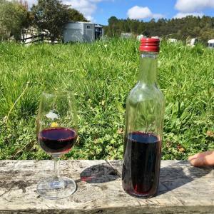 ワインは順調です/ Our Wine, My Project, RBG