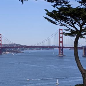 サンフランシスコからの便り、旅のお買い物/ Photos From San Francisco, Recent Purchase