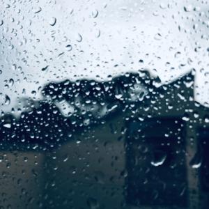 8月の雨、インスタグラム/ August Rain, My Instagram Page