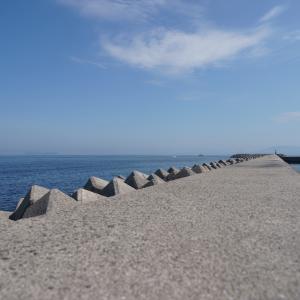 海沿いなどを散歩