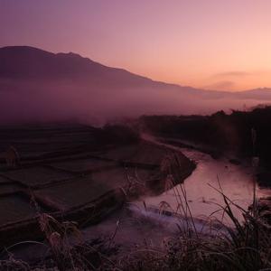 厳冬の白い朝