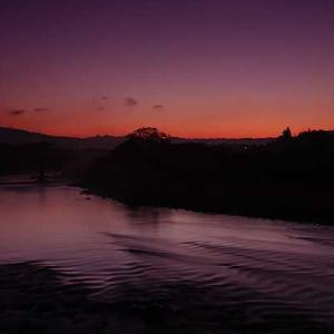 晩秋の川辺の朝