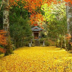 馬見原「生目神社」の紅葉写真