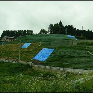 豪雨によるメルヘン村の被害状況