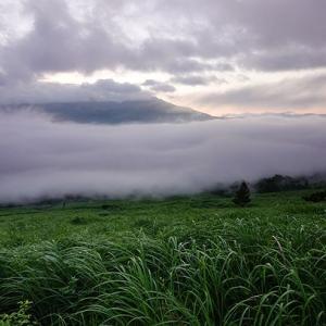 感動の夏の雲海