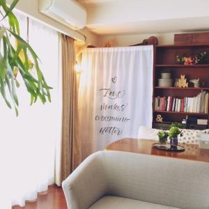 本棚にサンサンフーの目隠しカーテンをつけたよ
