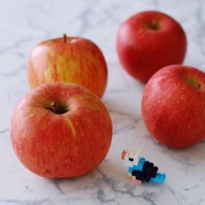 【楽天マラソン】訳ありりんごの消費と、お得なポッキリ食品!