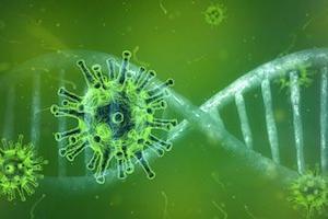 """""""終糸病と新型コロナウイルス感染症(COVID-19)にはどんな関係がありますか。"""""""