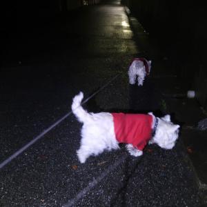 暗い散歩がノーマル状態になっている