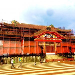今年の乾燥はひどい 首里城再建ふるさと納税(゜o゜)