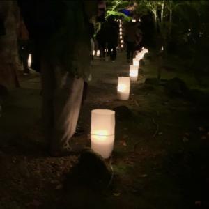 """お散歩スポット巡り#2 """"円通院"""" 公開(°▽°)"""