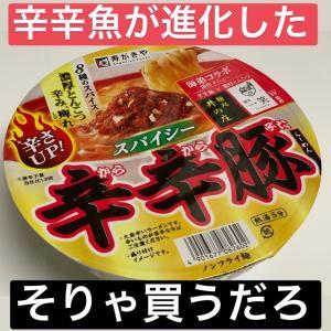 辛辛魚と辛辛豚(・o・)
