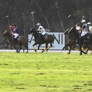 Queen's Cup Pink Polo 2020