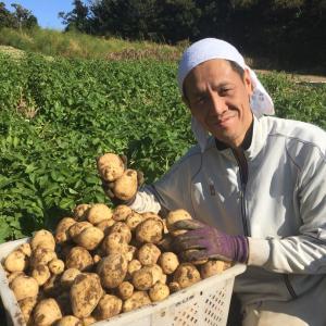 素人の野菜農家は島で食べていけるのか?最終回 第十七話
