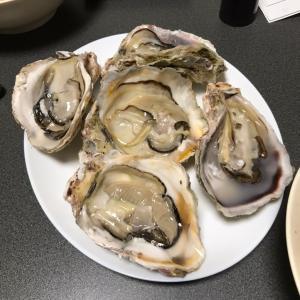 自家製牡蠣殻石灰づくり
