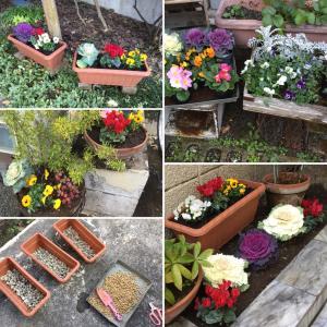 植え替えシーズン到来!おうちのお庭の整備致します!