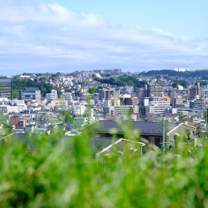 東京都と神奈川県