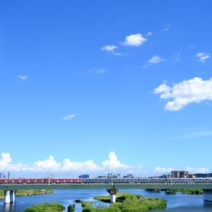 多摩川を渡る赤い小田急