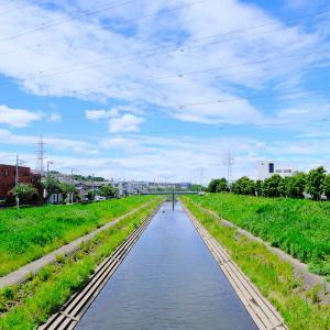 柏尾川の遊歩道