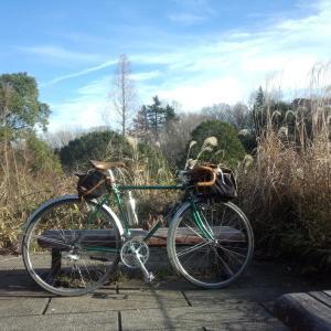 ランドナーで行く 冬枯れの三つ池公園
